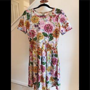 M (10-12) Amelia dress by Lularoe